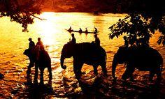 Au dos de l'éléphants à Buon Me Thuot.