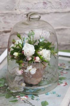 1000 images about cloches things in and under glass on for Rose under glass