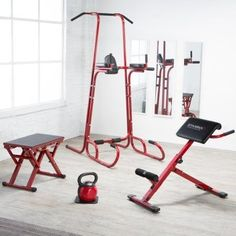 Finding motivation to hit your home gym will never be an issue once you have the Stamina X Cross Training Home Gym Bundle . This convenient. Basement Workout Room, Gym Room, Workout Rooms, Gym Workouts, At Home Workouts, Gym Shed, York Fitness, Power Tower, Plyometric Workout