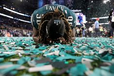 b249d2baf How Jay Ajayi helped the Eagles solve the Super Bowl puzzle