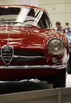 inaizumi — igulkan: Gentleman… Alfa Romeo
