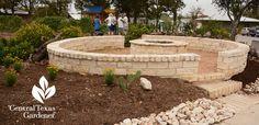 Formerly Homeless Grow Community at Genesis Gardens   Central Texas Gardener