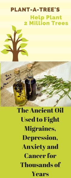 ancient-oil-used-fight-migraines-depression-anxiety-cancer-thousands-years/ https://www.musclesaurus.com