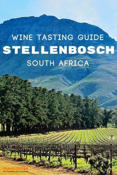 The ultimate guide to exploring Stellenbosch, South Africa's world-renowned wine region. Best vineyards and wineries for wine tasting, top restaurants and local cuisine, where to stay + tips and things to do for families visiting with young children. Travel in South Africa. | Travel Dudes Travel Community #Stellenbosch #SouthAfrica #AfricaTravelCapeTown #AfricaTravelOutfit  South Africa Acesse Nosso Blog encontre muito mais Informações http://storelatina.com/southafrica/travelling
