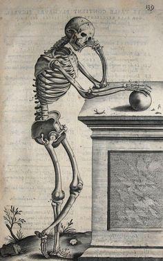 André du Laurens (1558-1609 pinterest.com/pin/287386019946881538) - Ex Libris of Pierre Americ, 1613 (anatomical engraving derived from Vesalius: pinterest.com/pin/287386019946513826).