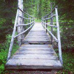 Suomen luonnossa mieli lepää
