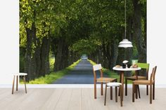 Tree Avenue - Tapetit / tapetti - Photowall
