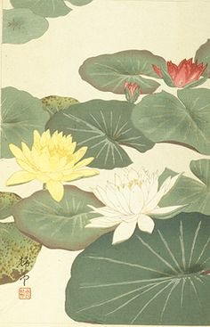The Lotus shares some associations with the lily. Lotus flowers, which bloom in water, can represent female sexual power and fertility as well as birth or rebirth. The ancient Egyptians portrayed the goddess Isis being born from a lotus flower, and they placed lotuses in the hands of their mummified dead to represent a new life into which the dead souls had entered.