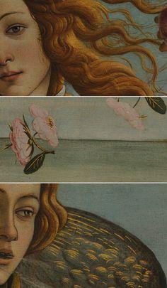 Details from Botticelli's Birth of Venus Rennaissance Art, Van Gogh Art, Art Vintage, Renaissance Paintings, Classical Art, Angel Art, Psychedelic Art, Art Plastique, Aesthetic Art
