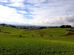 #tuscany #aroundvilla #lifeintuscany