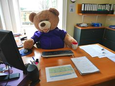 We've asked our friend to help us with some of the work. But he has BEARly done anything!