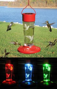 Solar Powered Color Changing Hummingbird Feeder. This popular hummingbird feeder is more than it seems. It feeds your hummingbirds by day, with 10 ounce capacity, 4 feeding ports. By night it becomes a solar powered bird feeder. The solar panel on top powers the lovely constantly changing light show from red to blue to green. The translucent bottom of the bird feeder lets the light shine out down thru the bottom with an eye catching display in the darkness.