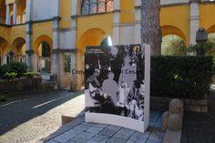 Degu, Writers And Poets, Lake Garda, Italy, Life, Italia