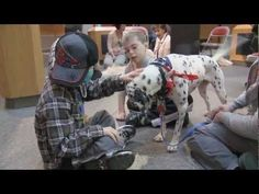 Once a week in the atrium of the Danny Thomas Research Center, children gather around a group of dogs as part of the Doggy Daze for St. Jude, a program offering patients a welcome break from treatments to relax and interact with some furry friends.