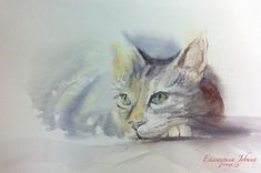 Cats — Watercolor artworks by Ekaterina Gubina