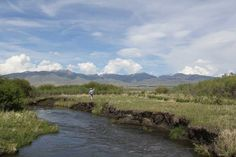 Ruby River Fly Fishing | Montana Angler Fly Fishing....can't wait to fly fish this summer with my son and daughter.