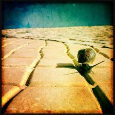 Photo by @Gjnewnham. http://makebeautiful.hipstamatic.com