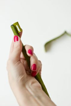 DIY Giant Crepe Paper Roses   Studio DIY®