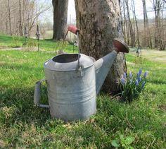 Watering Can Vintage Metal Watering Can Red by BellaVitaVintage, $49.00