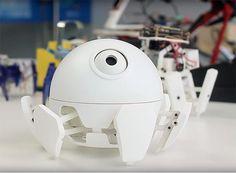 roboeve xpider robot