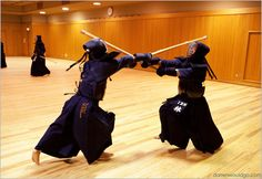 I used to do Kendo Martial Arts... Maybe I should start up again...