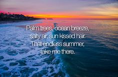 Palm trees, ocean breeze, salty air, sun kissed hair, That endless summer, take me there.