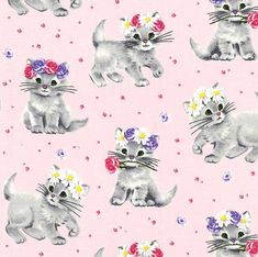 Adorable Cats /& Kittens Allover Cotton Fabric 1//2 Yard 1//2 Yard X 44 Great for Quilting, Sewing, Craft Projects, Quilt, Throw Pillows /& More