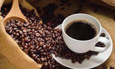 ciri kopi enak,cara membuat kopi arabika,cara penyajian kopi arabika,harga kopi robusta,budidaya kopi robusta,manfaat kopi robusta,jual kopi robusta,kopi robusta pdf,