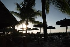 Chefs guide you to the best conch, oxtail, and beach bars on the island.