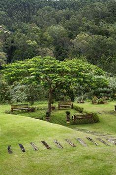 Jardins da casa de campo Atibaia foram criados por Alex Hanazaki, e se inserem na Mata Atlântica circundante com naturalidade.  Fotografia: Ricardo Labougle.: