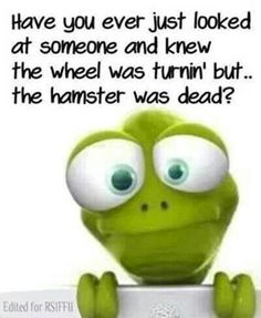 Have you ever just looked at someone and knew the wheels was turnin' but... the hamster was dead?