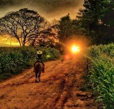 Zona rural mineira. Estado de Minas Gerais, Brasil. Fotografia: http://www.portalanaroca.com.br