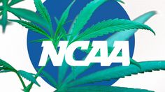 NCAA Needs To Take Another Look At Its Marijuana Policy - http://movietvtechgeeks.com/ncaa-needs-take-another-looks-marijuana-policy/-Ohio State defeated Oregon 42-20 to claim college football's national championship, the first-ever in the new College Football Playoff era. Would it have been any different if the Ducks' Darren Carrington and Ayele Forde could have played?