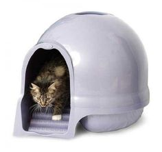 The Best Booda Dome Cleanstep Cat Box, Brushed Nickel, Covered Litter Dome, New ** Check this awesome product by going to the link at the image. (This is an affiliate link and I receive a commission for the sales)
