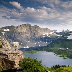 What to see in Glacier National Park~on the bucket list!
