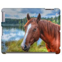 Sorrel Mare Ranch Horse Theme for Equine-lovers