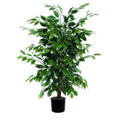 Vickerman 4' Artificial Focus Bush set in Black Pot * Want additional info? Click on the image.