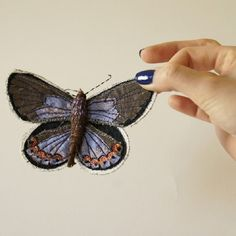 La Collection d'Insectes de Blue Terracotta via @chambre237