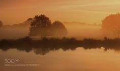 Sunrise reflection by IngunaPulme. Please Like http://fb.me/go4photos and Follow @go4fotos Thank You. :-)