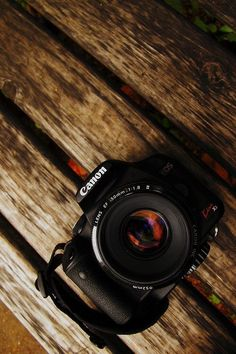 canon all day everyday Best Camera For Photography, Passion Photography, Creative Photography, Portrait Photography, Photography Flowers, Photography Gallery, Photography Aesthetic, Camera Hacks, Camera Gear