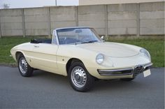 1967 Alfa Romeo Duetto  possible use of my material (cast polyamide which I can produce) for the casters/wheels/pulleys/gears/cogs/pads… My contact: tatjana.alic@windowslive.com
