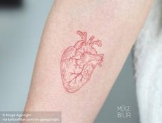 Tattoo uploaded to Tattoofilter Red Heart Tattoos, Red Tattoos, Line Art Tattoos, Love Tattoos, Tattoos For Women, Tatoos, Toe Nail Art, Acrylic Nails, Anatomical Heart