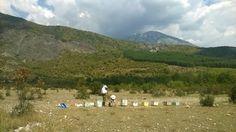 http://www.keriladi.gr/p/blog-page_14.html