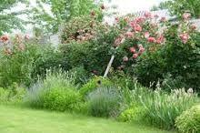 gardens planting schemes