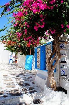世界遺産 ミコノス島の絶景写真画像 ギリシャ Greece, Scenery, Sidewalk, Island, World, Amazing, Places, Wedding, Travel