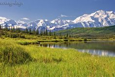 Wonder Lake on a sunny morning, Denali National Park, Alaska