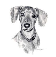 Portrait Of A Mini Dachshund Drawing Dog Pencil Drawing, Dachshund Drawing, Arte Dachshund, Pencil Drawing Tutorials, Pencil Drawings, Art Drawings, Drawing Art, Dog Face Drawing, Mini Dachshund