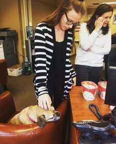 Max receives a lot of #love here at the agency! #puggle #officedog