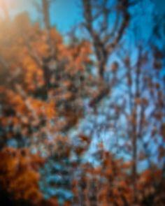 Picsart real cb editing background png 2019 2019 background png devil wings photo editing background best cb editing backgrounds for you top cb editing background Blur Background In Photoshop, Blur Image Background, Blur Background Photography, Desktop Background Pictures, Light Background Images, Studio Background Images, Background Images For Editing, Picsart Background, Best Hd Background