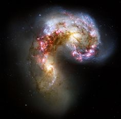 The Antennae are two galaxies in the process of merging. They were once spiral galaxies like our Milky Way, but they have been interacting and colliding for hundreds of millions of years and are morphing into a new object. Infrared and visible light captured in this image from the Hubble Space Telescope give us clues about the cosmic chaos going on. Clouds of gas are shown in pink and red, while the cores of the galaxies, where some of the older stars remain, are yellow. The blue-colored points